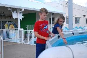 Nolan and Caitlin examining the sting rays. Photo Credit: Jen Stratton